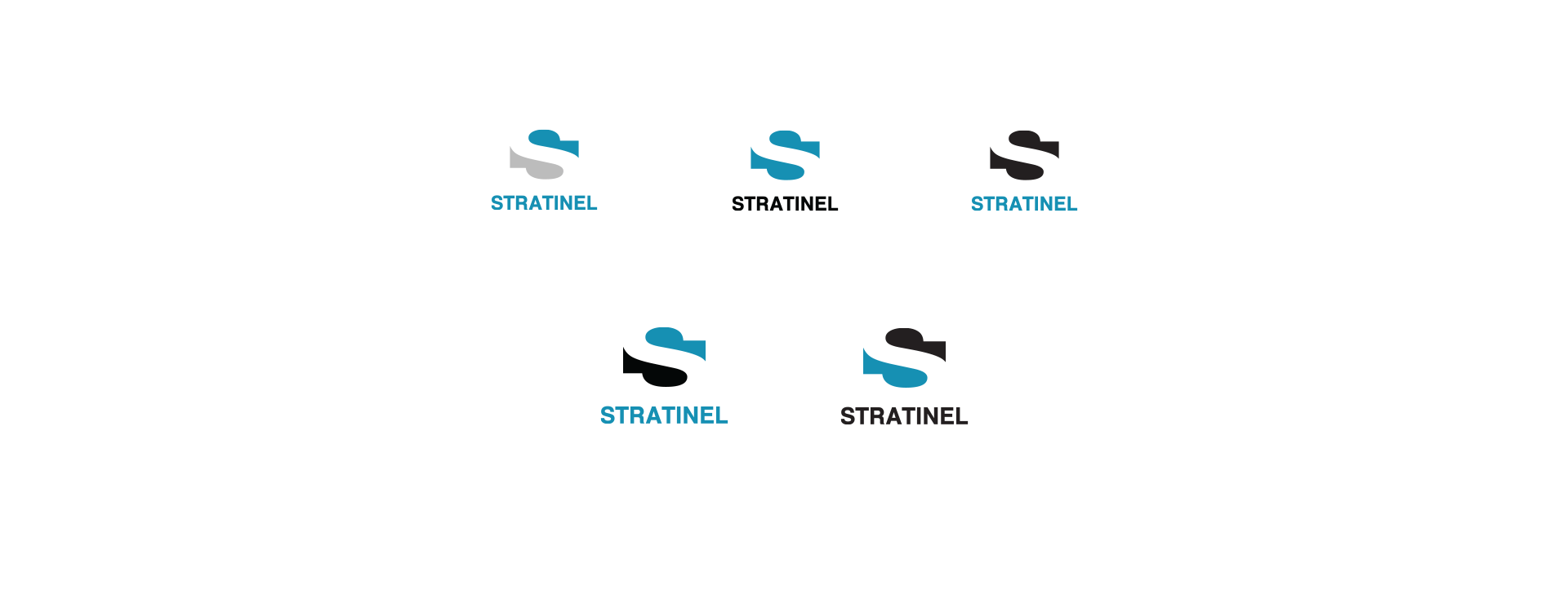 Logo Design - Color Variations