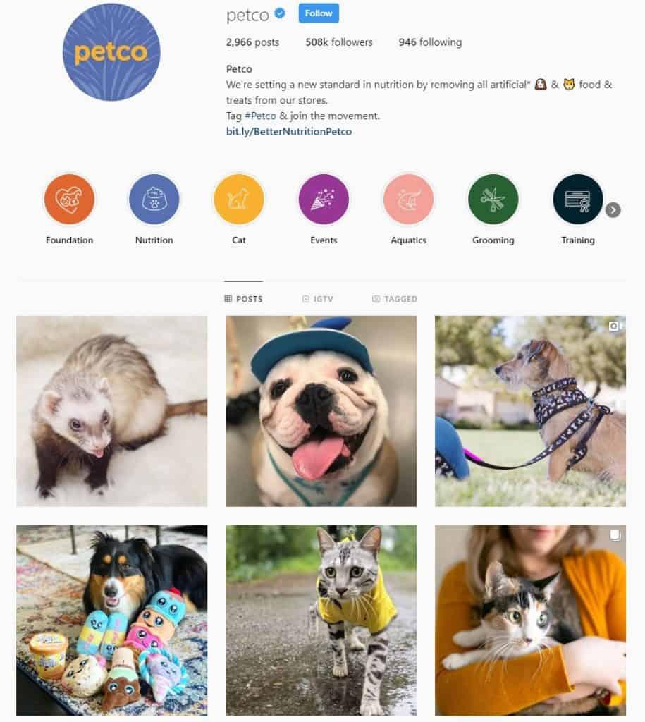 Petco Instagram Example