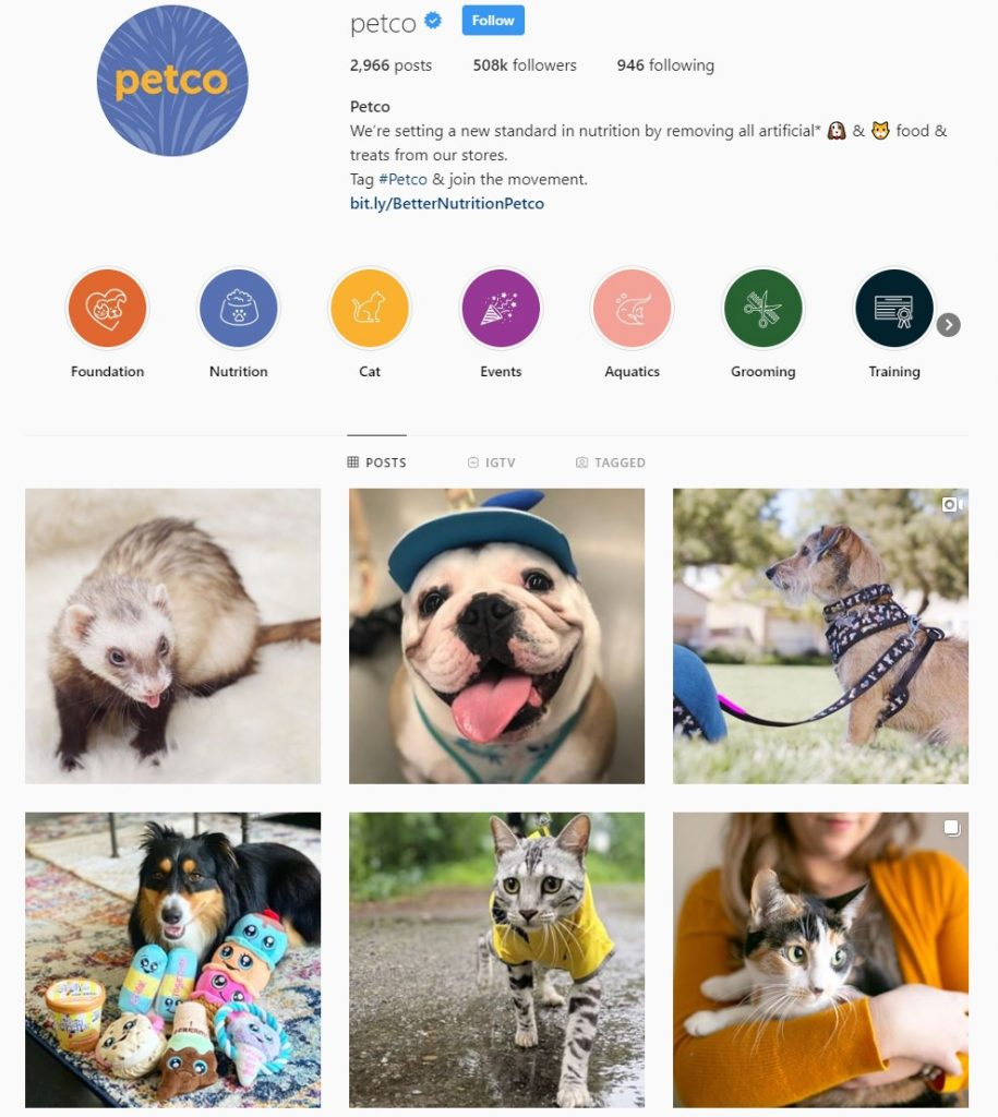 Petco Instagram Example