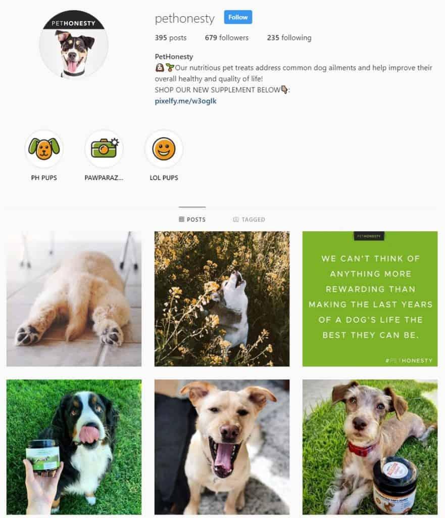 PetHonesty social media brand example