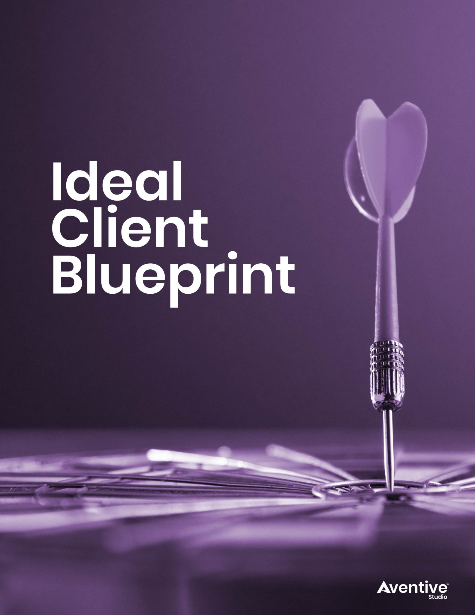 1 Ideal Client Blueprint Cover